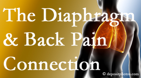 The Novelli Wellness Center recognizes the relationship of the diaphragm to the body and spine and back pain.