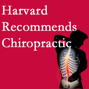 The Novelli Wellness Center offers chiropractic care like Harvard recommends.