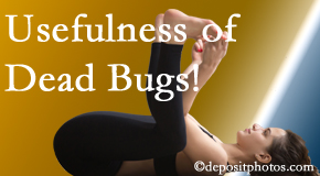 The Novelli Wellness Center finds dead bugs quite useful in the healing process of Buffalo, NY back pain for many chiropractic patients.