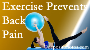 The Novelli Wellness Center suggests Buffalo, NY back pain prevention with exercise.