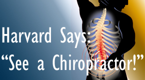 Buffalo, NY chiropractic for back pain relief urged by Harvard