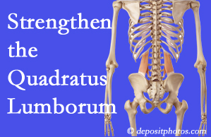 Buffalo, NY chiropractic care offers exercise recommendations to strengthen spine muscles like the quadratus lumborum as the back heals and recovers.